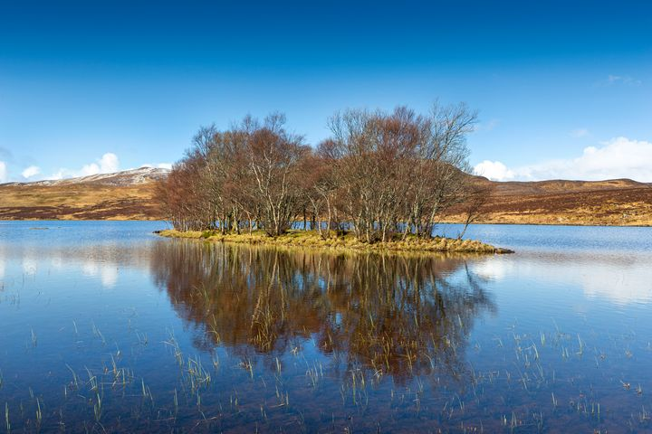 Loch Island - Dave Hare Photography
