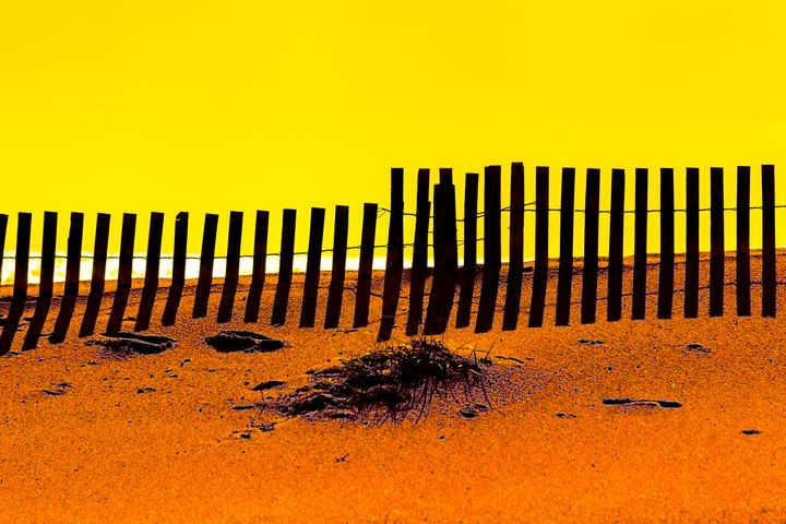 Yellow Fence - Dave Hare Photography