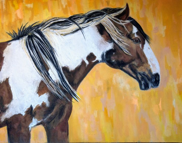 The Majesty of Picasso - Trish Bonnette