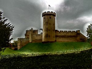 Warwick Fantasy