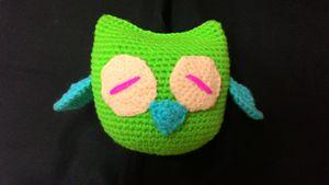 Nok the sleepy owl