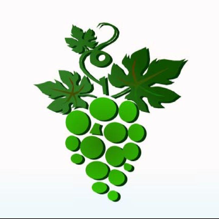 grapes - chinnu