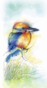 Kingfisher - JKO