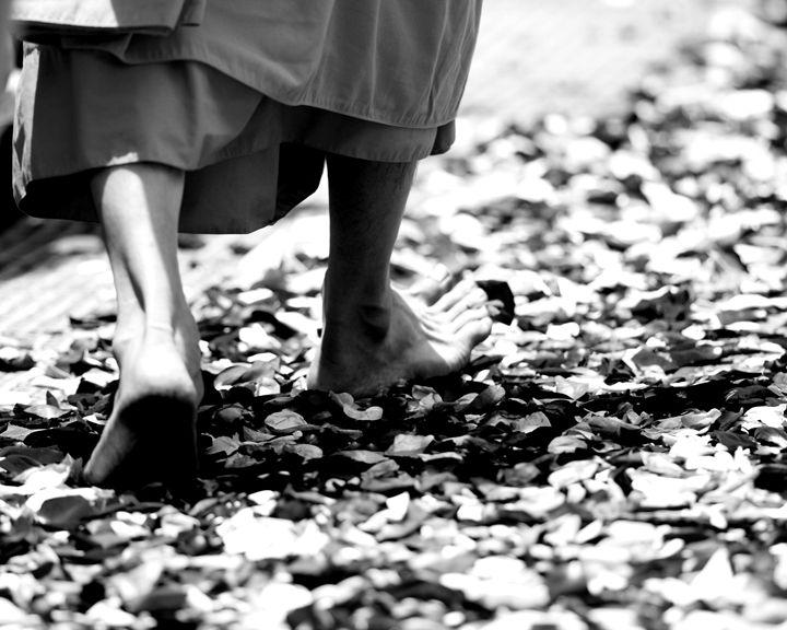 Monk walking on rose petals - KCBlack&White