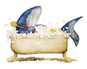 Whale Bath