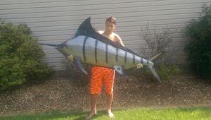 Big fish - Wow factor