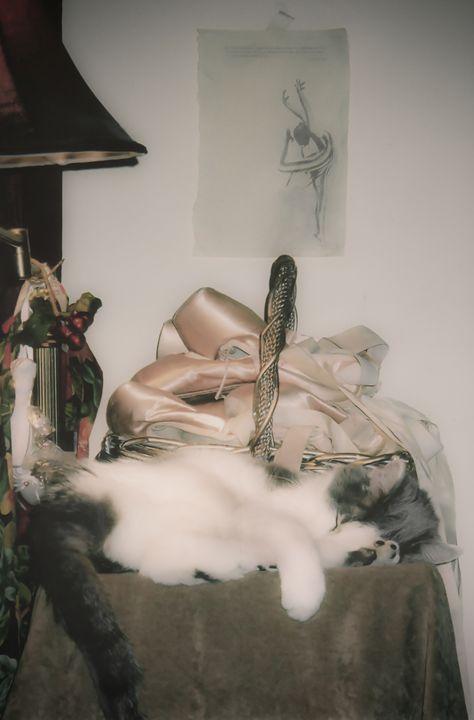 Giselle - Art Photos