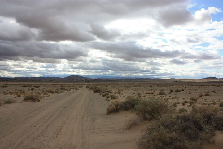 Deserted Desert Dirt - Madelyn M.