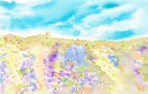 Summer bloom meadow watercolor abstr