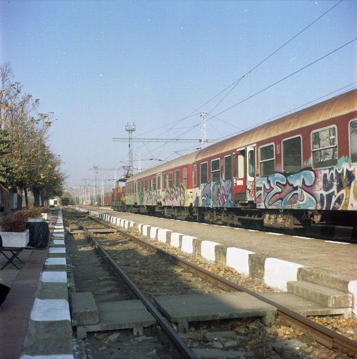 The Graffiti Train - Tom Pinnegar