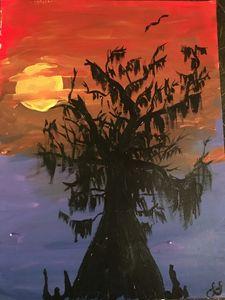 Sunset cypress - Lauren Landry