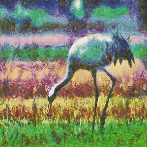 Crane bird - Samartist250