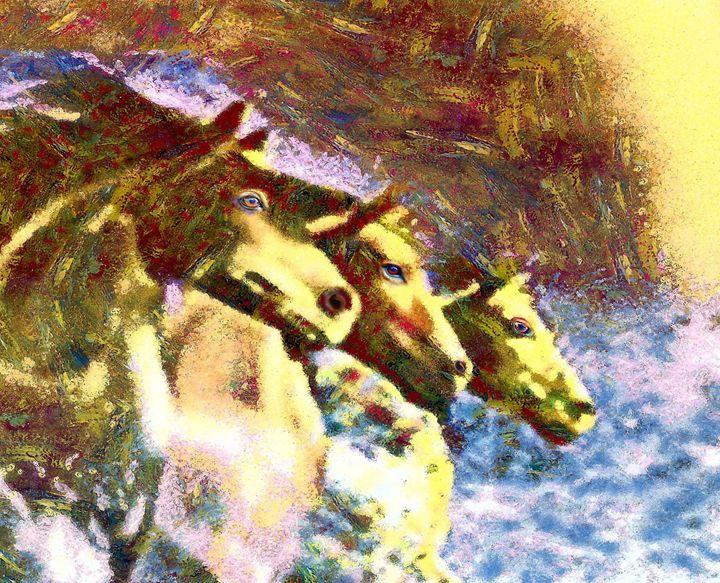 3 Horses running - Samartist250