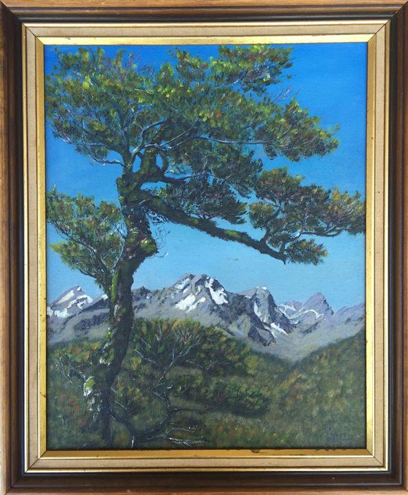 Near Fox Glacier - Dorothy Hollings