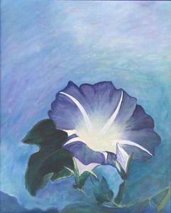 Glorius Morning Glory - Dorothy Hollings