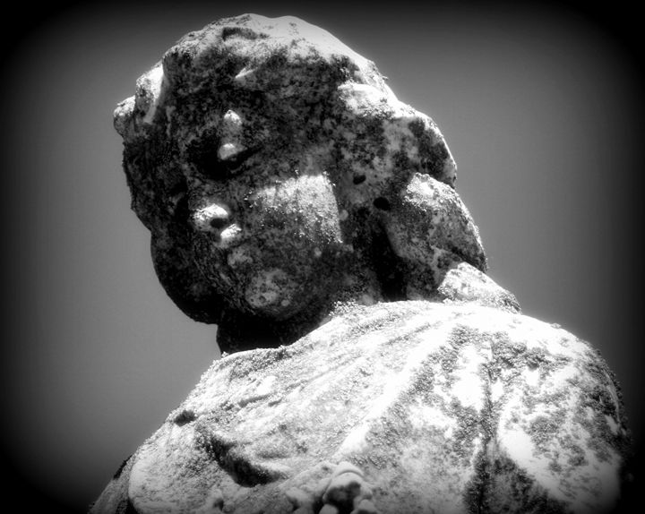 Cherubic Observer - Thoughts Captured