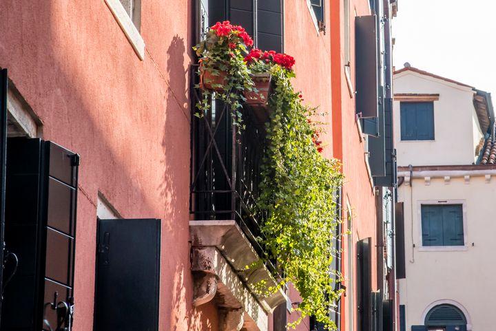 Windows of Venice 07 - Eva Bane