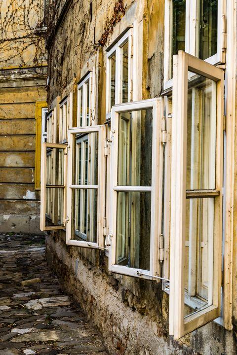 Windows of Vienna 01 - Eva Bane