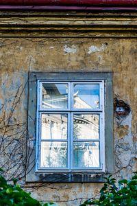 Windows of Vienna 03