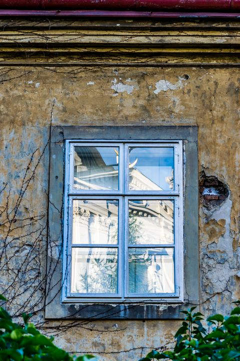 Windows of Vienna 03 - Eva Bane