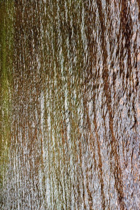 Autumn on the Water 01 - Eva Bane