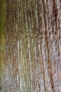 Autumn on the Water 01