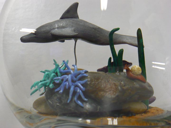 Dolphin in a Goldfish Bowl* - Ostara Scarlett Designs