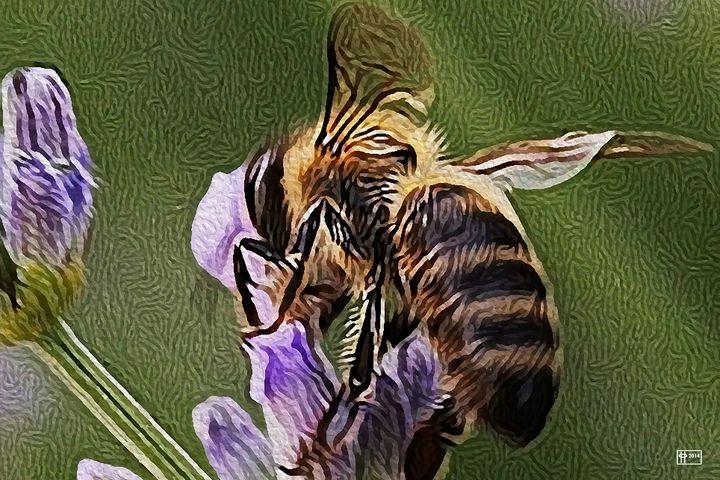 Honey Dew - Pavelle Fine Art