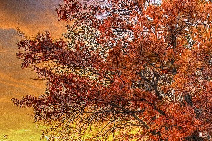 Fire Sky - Pavelle Fine Art