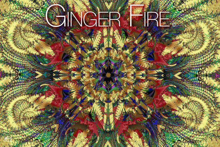 Ginger Fire - Pavelle Fine Art