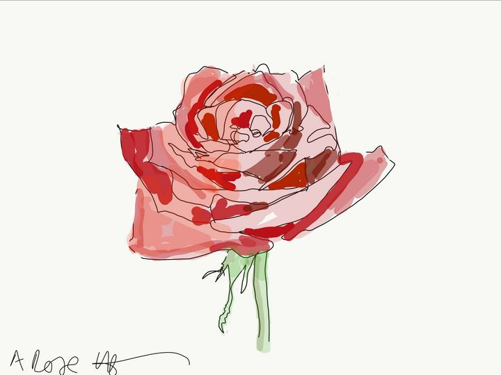 a rose - Markartistic