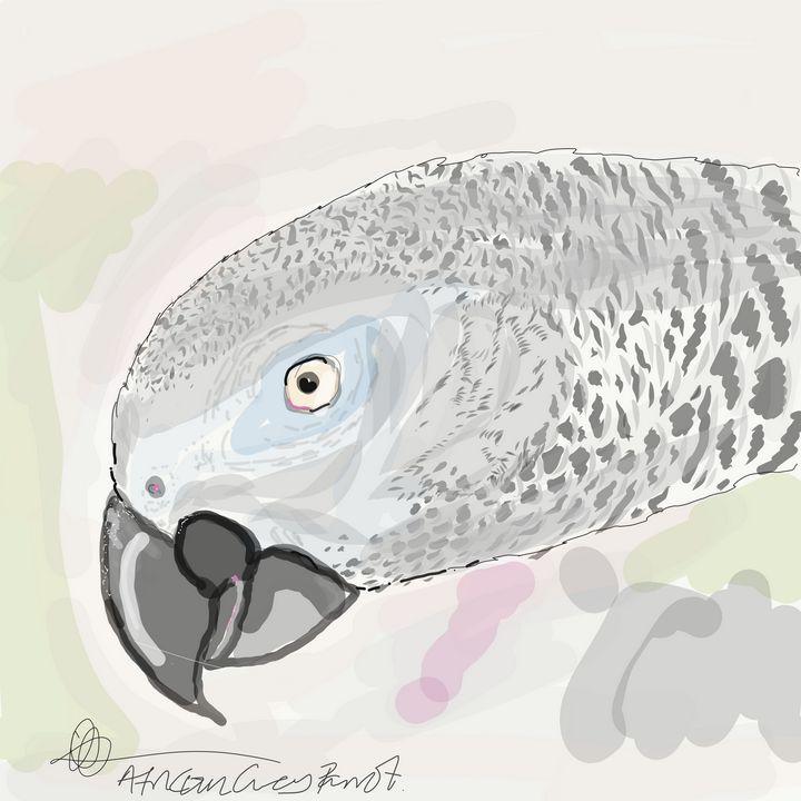 African grey parrot - Markartistic