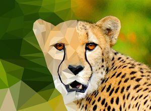 Polygon Cheetah - Sky Designs