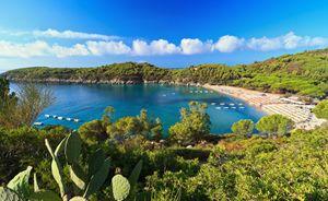 Fetovaia bay - Elba island