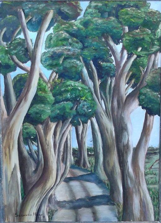 EUCALYPTES TREES - SUSANNA HUGO