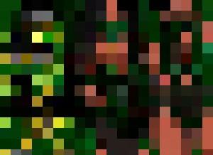 fan art mortal kombat 11 jade