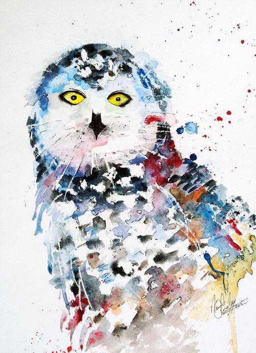 Canadian Snowy Owl - A Splash of Colour
