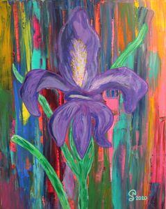Fleur De Lis Iris