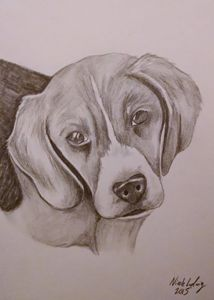Beagle - Ludwig's Fine Art