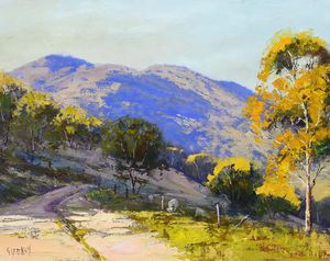 Valley track near Lithgow