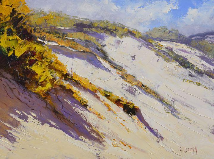 Coastal Dunes - Graham Gercken Fine Art