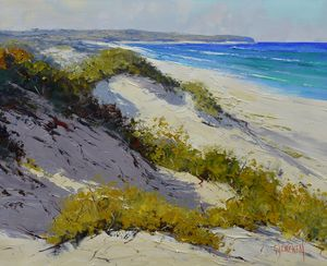 Light across the dunes central coast