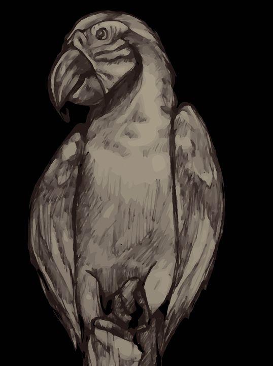 Grey Parrot - Munchart