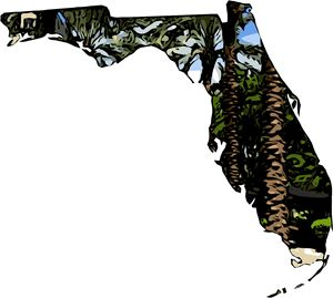 The Shape of Florida - Munchart