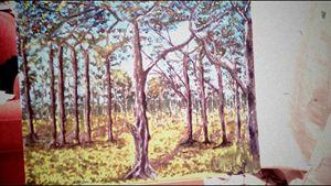 Dorset forest scene