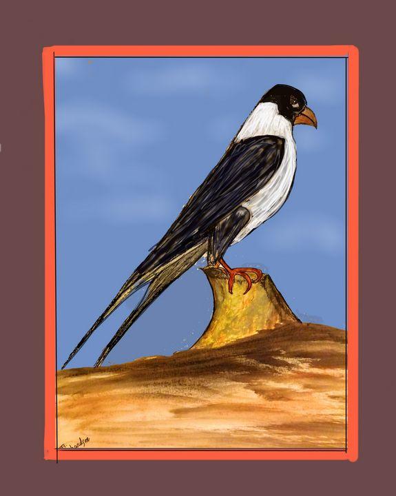 Peregrine Falcon Rare Pose - Richardson's Unique Creations