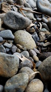 River Stone 05