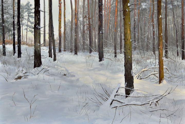 Winter forest - Kostadin Zhikov