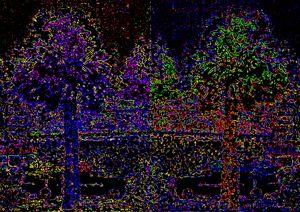 2 Views One World jgibney image art1