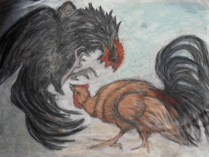 Cockfight - Liz Coppock